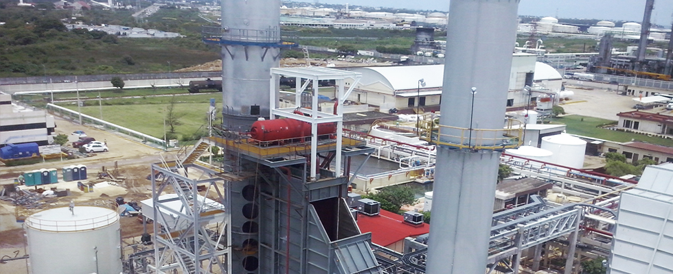 CONTRACT FOR THE OPERATION AND MAINTENANCE OF A COGENERATION PLANT IN MEXICO